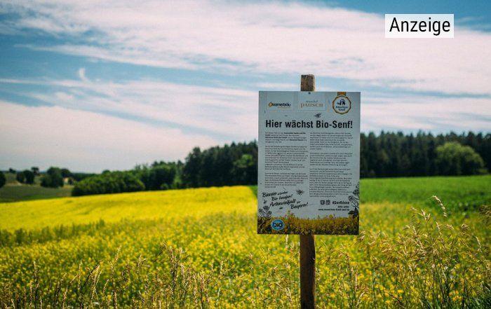 Das Schild am Rande eines gelb blühenden Senffeldes informiert über die Bioqualität und das Prjekt Senfbiene, das sich für Artenvielfalt einsetzt.