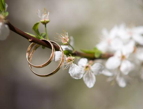 5 Tipps für eine  umweltfreundliche Hochzeit