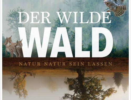 Der Wilde Wald –  Filmpakete gewinnen