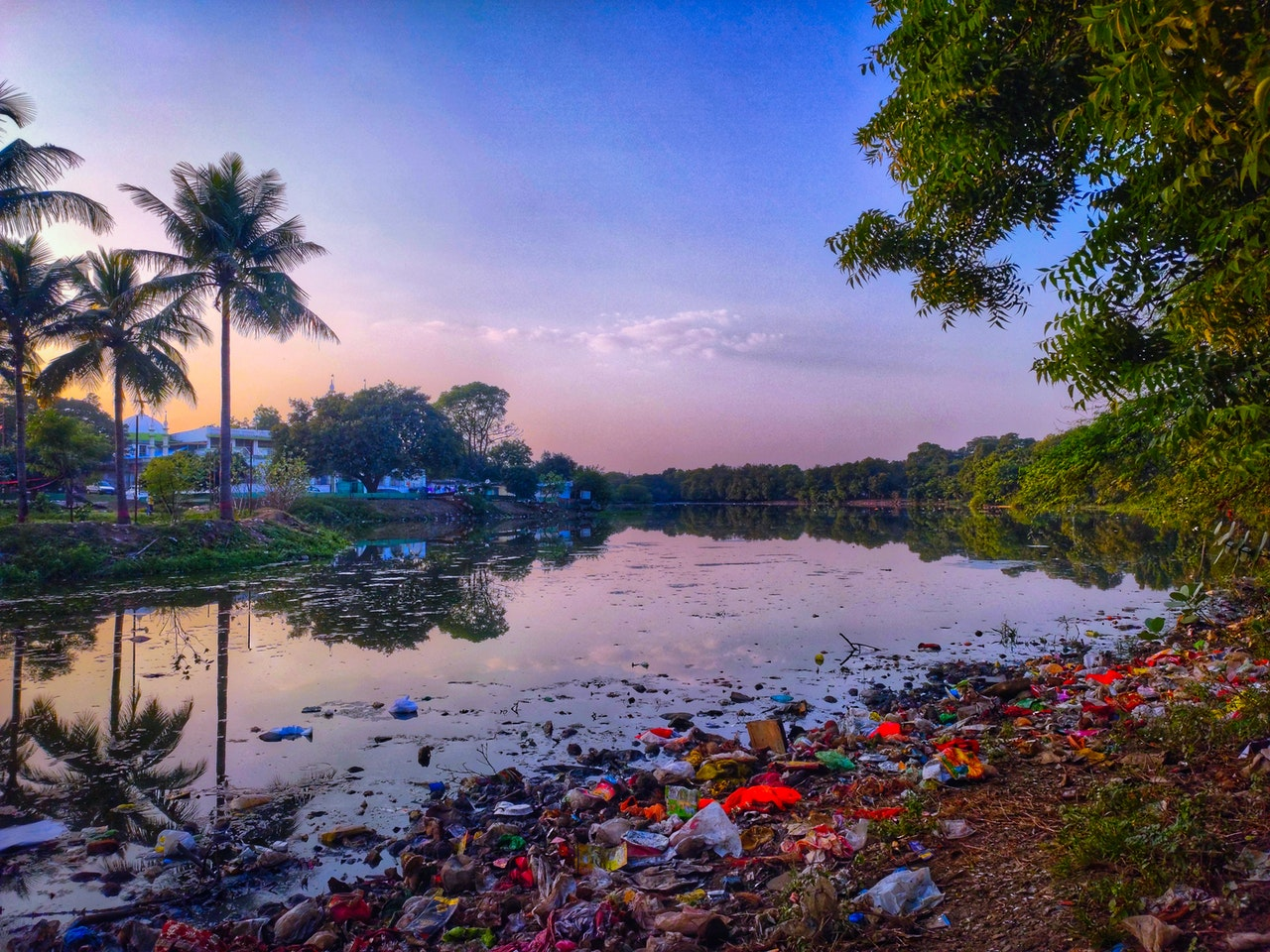 Abenddämmerung an einem Gewässer mit Palme und viel Plastikmüll am Ufer.