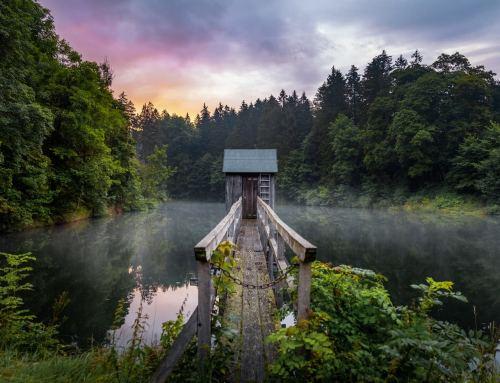 Zuhause in der Natur:  Niedersachsen erleben