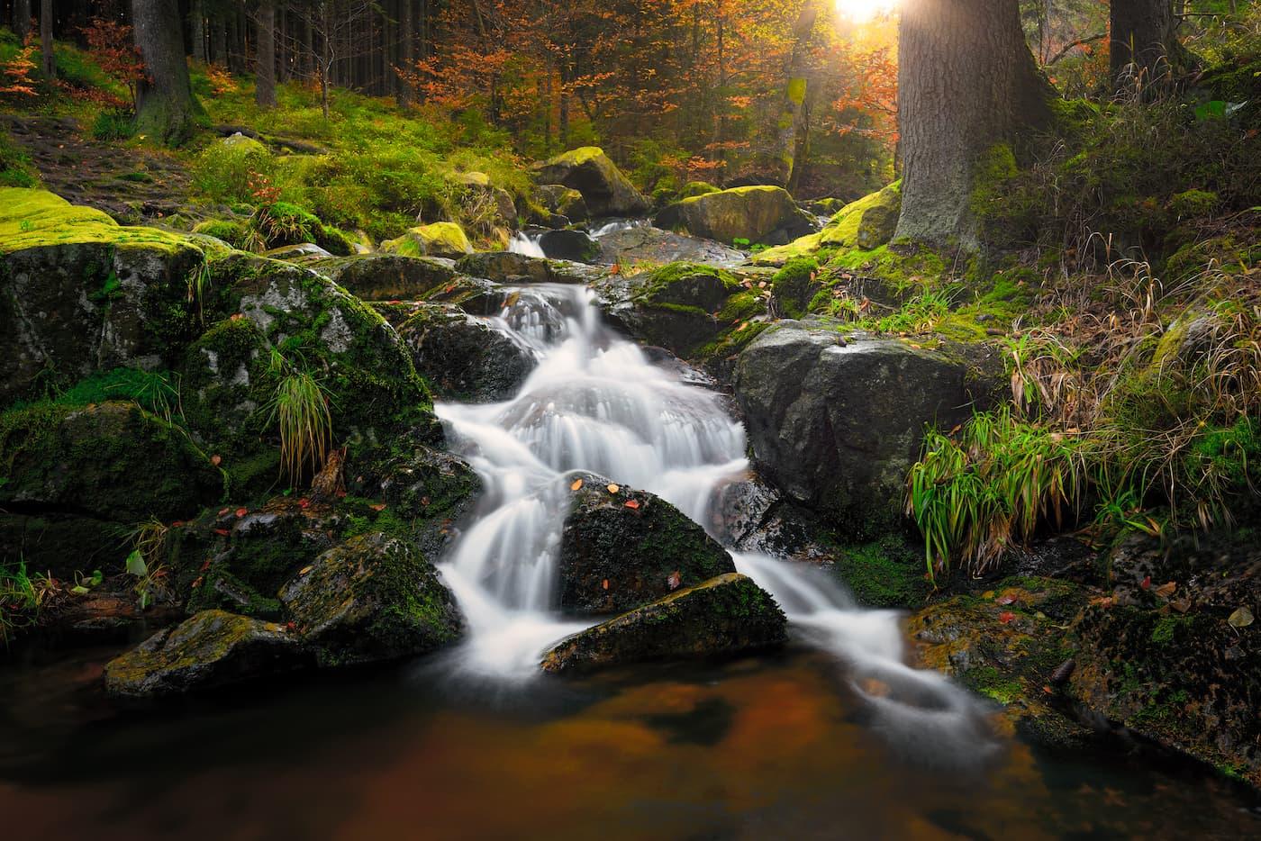 Ein kleiner Wasserfall im Wald im sommerlichen Abendlicht.