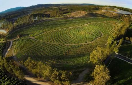 Die Apricot Lane Farm in Kalifornien von oben