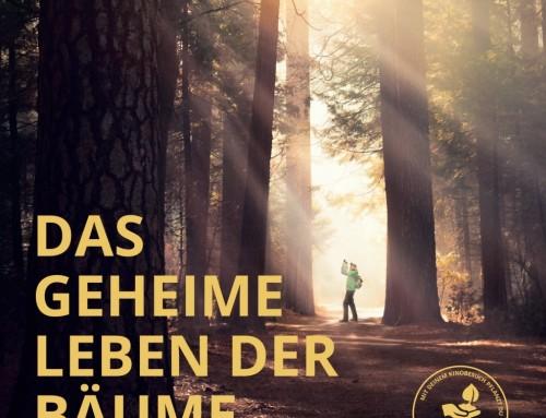 Filmpaket: Das geheime Leben der Bäume