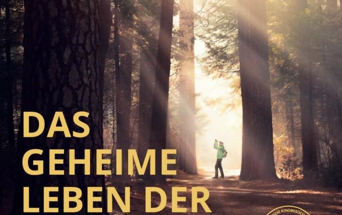 Filmplakat Das geheime Leben der Bäume