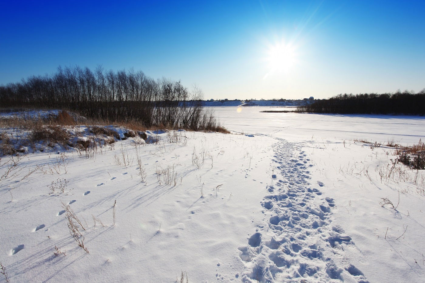 Landschaft an sonnigem Wintertag