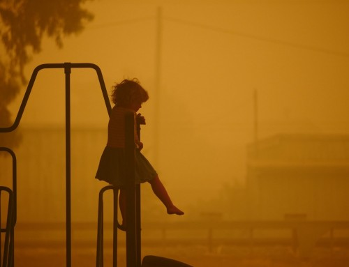 Naturkatastrophe: Feuer in Australien