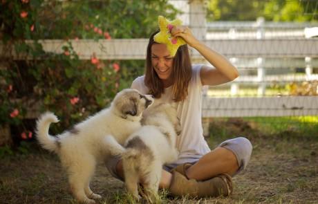Eine Szene aus dem Dokumentarfilm Unsere große kleine Farm zeigt Molly Chester mit zwei jungen Hütehunden spielend