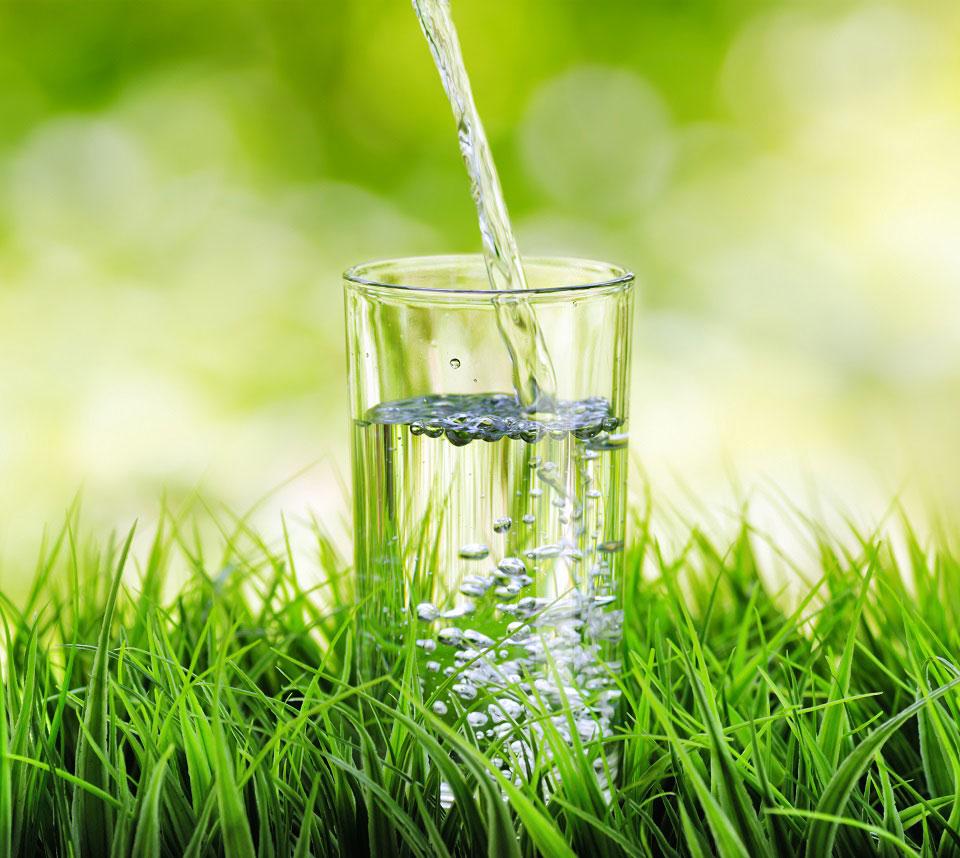 Ein Wasserglas wird auf einer grünen Wiese mit Trinkwasser befüllt. Ausreichend zu trinken ist wichtig für unsere Gesundheit. © Efired / Shutterstock