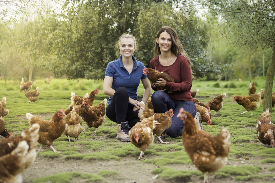 Auf einer grünen Wiese sitzen die Schwestern Leonie und Annalina Behrens umgeben von glücklichen Hühnern.