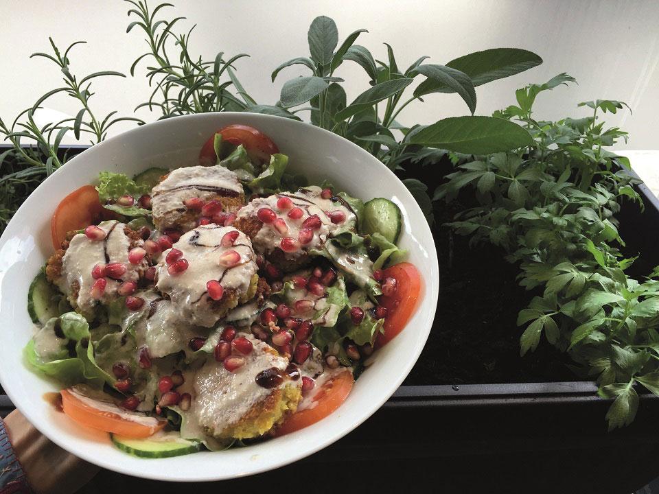 Der liebevoll angerichtete Teller mit Salat, Gemüseküchlein wurde mit einer hellen Soße und Granatapfelkernen garniert.