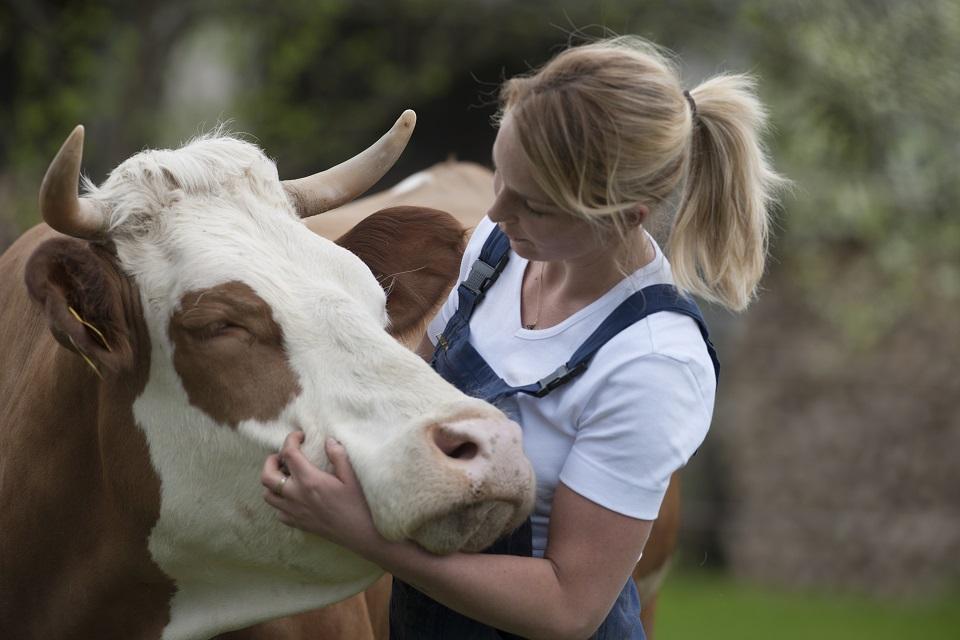 Eine junge Landwirtin mit blondem Pferdeschwanz und in blauer Lathose umarmt den Kopf einer braun gescheckten Kuh mit Hörnern.