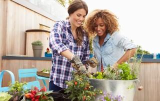 Zwei junge Frauen pflanzen gemeinsam auf einem Balkon mit Holzverkleidung Tomaten in einen großen metallischen Pflanzenkübel und haben sichtlich Spaß am Gärtnern.