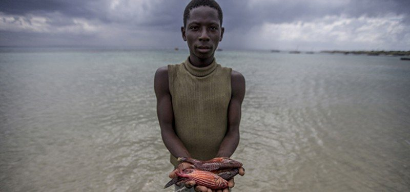 Ein Fischer in Mafamede, Mosambik hält Fisch in seiner Hand. Mafamede ist Teil des Küstenschutzgebiets Primeiras e Segundas. Foto © James Morgan / WWF