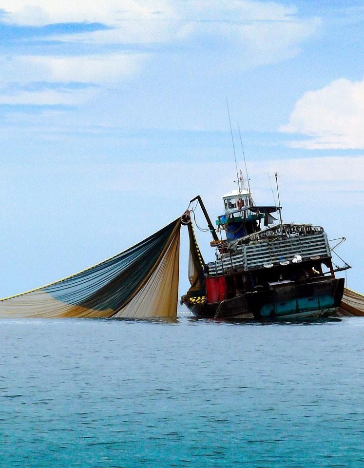 Links und rechts von dem Fischkutter auf hoher See sieht man riesige Fangnetze, die aus dem Wasser ragen.