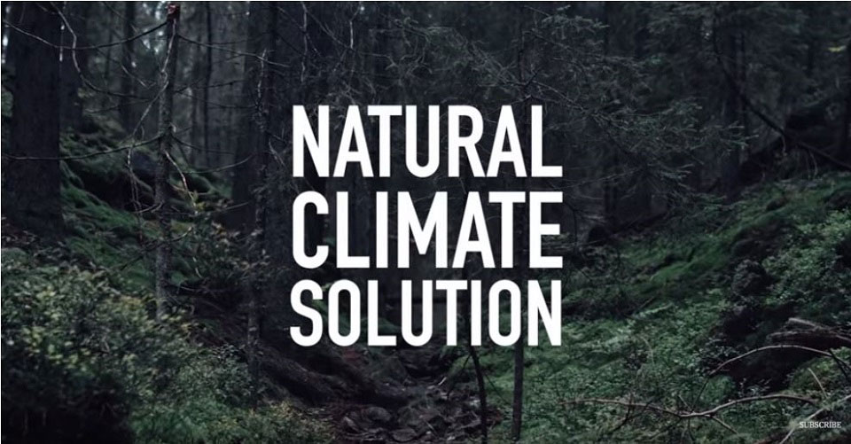 Die Momentaufnahme aus dem Kurzfilm zeigt den Schrift Natural Climate Solution während im Hintergrund ein Wald zu sehen ist.