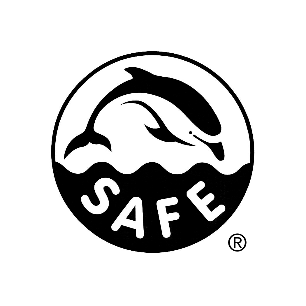 EII Delfin SAFE Logo