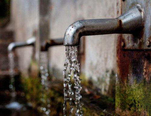 Wasserqualität in Deutschland: Wie gut ist unser Leitungswasser?