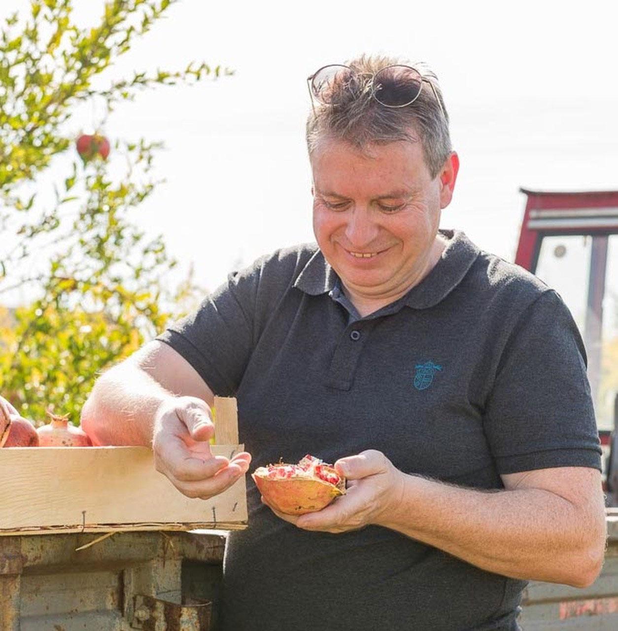 Mann von Obsthof Retter prüft Granatapfel auf Qualität