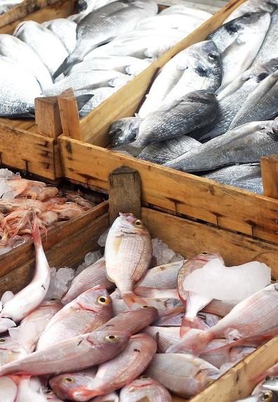 Verschiedene Fische liegen fangfrisch in Kisten, um auf einem Fischmarkt verkauft zu werden.