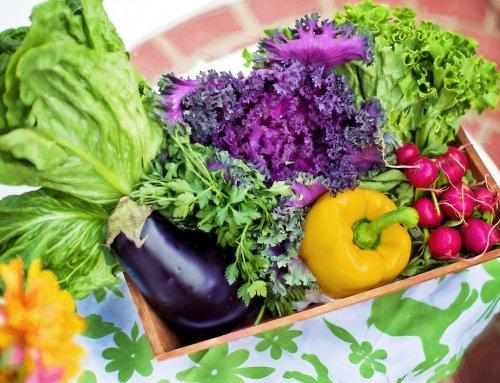 Balkongarten – Tipps für Gemüse, Kräuter und Co.