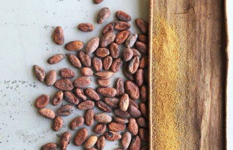 Bioschokolade Vivani Kakaobohnen