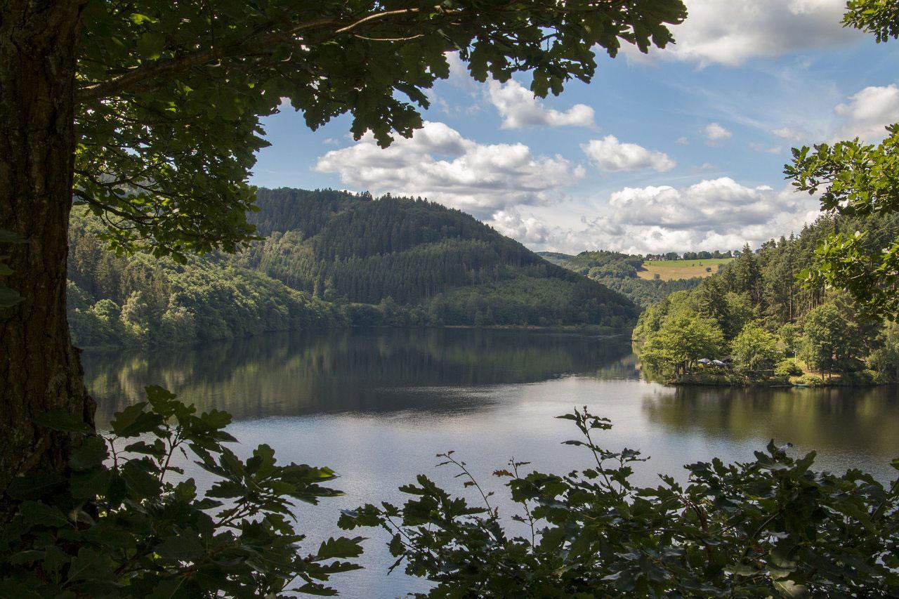 Ausblick auf Seenlandschaft in der Eifel.