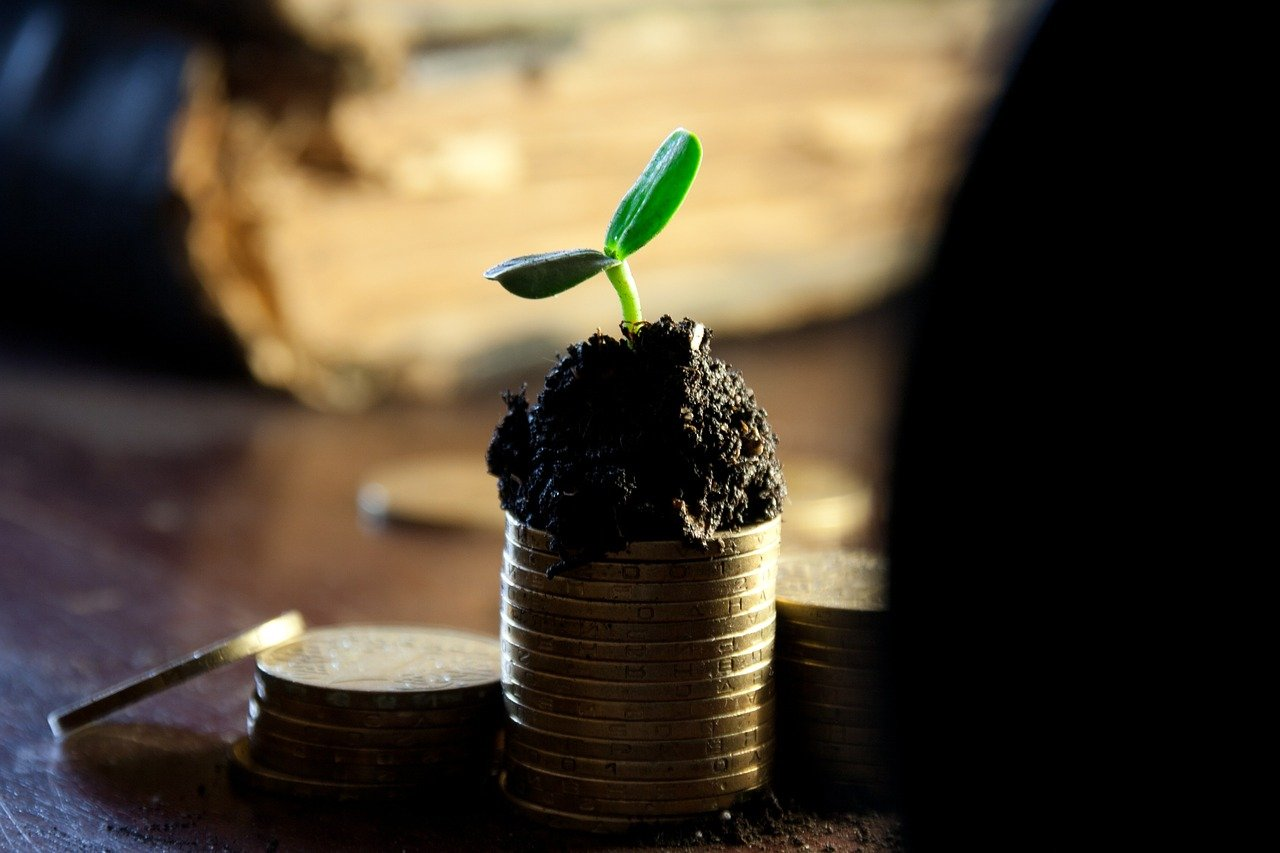 Pflanzenkeim auf gestapelten Münzen als Symbolbild für grüne Geldanlagen.