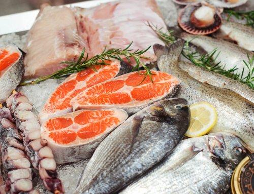 Nachhaltiger Fischkonsum – darauf sollten Sie achten
