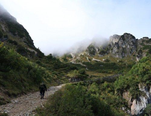 Wandern in Deutschland – Erholung in der Natur