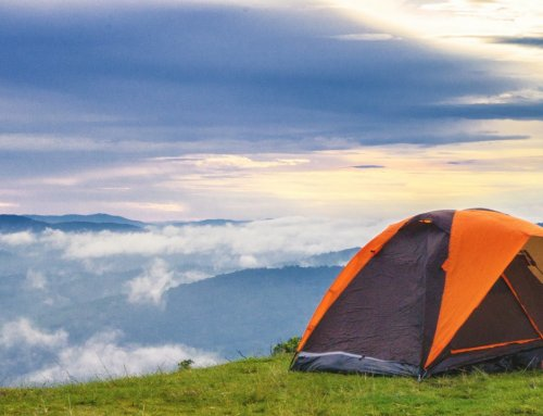Wildcamping: into the wild